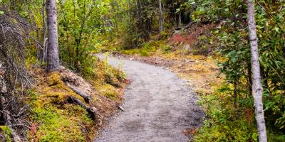 Stock photo of hiking trail